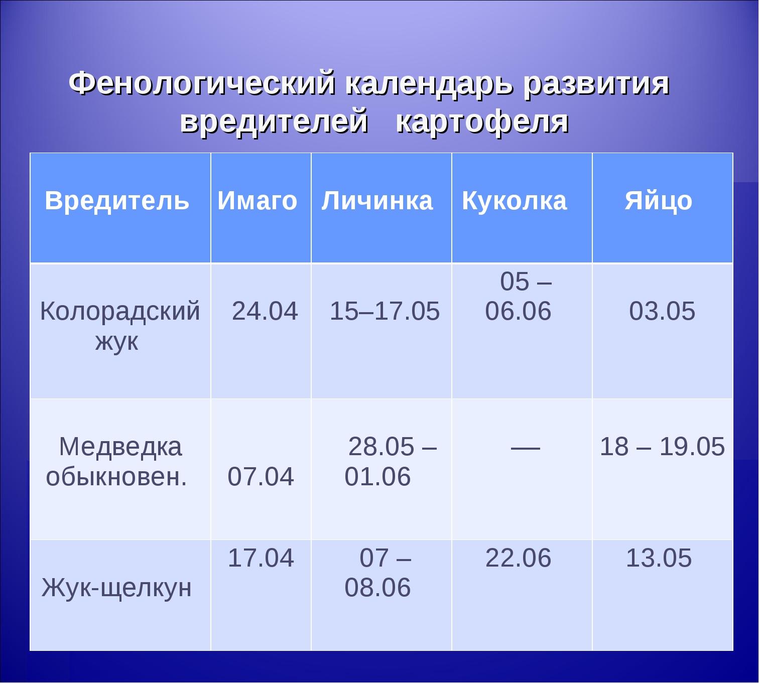 Фенологический календарь развития вредителей картофеля Вредитель  Имаго  Ли...