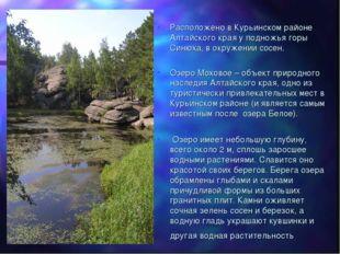 Расположено в Курьинском районе Алтайского края у подножья горы Синюха, в окр