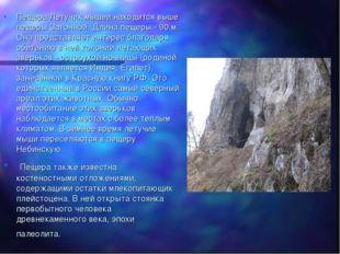 Пещера Летучих мышей находится выше пещеры Загонной. Длина пещеры - 90 м. Она