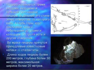 Пещера начинается тремя входами, ведущими в большой грот-сердце пещеры. В дал