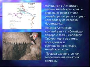 Находится в Алтайском районе Алтайского края, в верховьях реки Устюба (левый