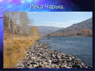 Река Чарыш.