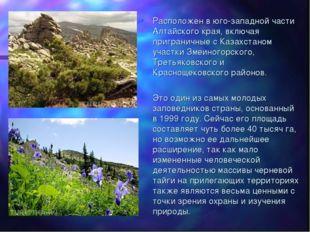 Расположен в юго-западной части Алтайского края, включая приграничные с Казах
