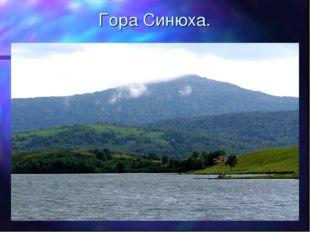 Гора Синюха.