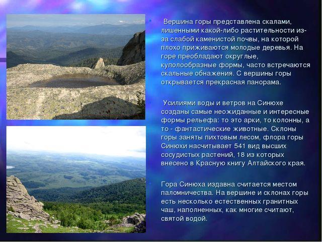 Вершина горы представлена скалами, лишенными какой-либо растительности из-за...