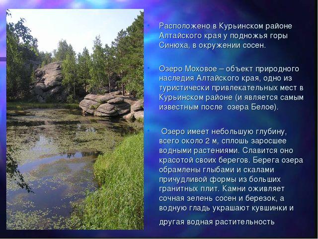 Расположено в Курьинском районе Алтайского края у подножья горы Синюха, в окр...