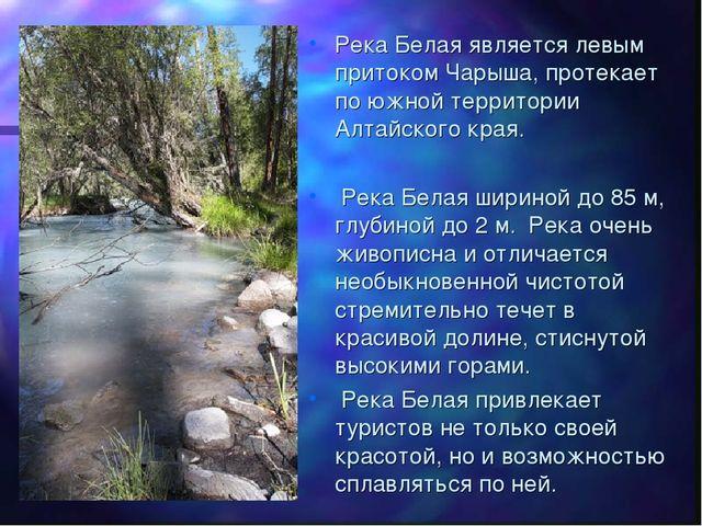 Река Белая является левым притоком Чарыша, протекает по южной территории Алта...