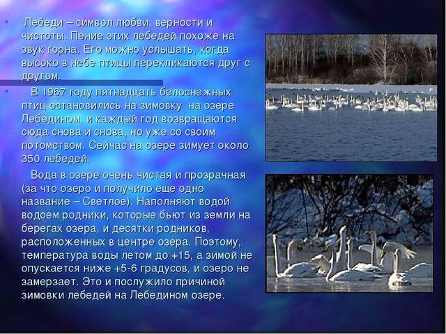 Лебеди – символ любви, верности и чистоты. Пение этих лебедей похоже на звук...