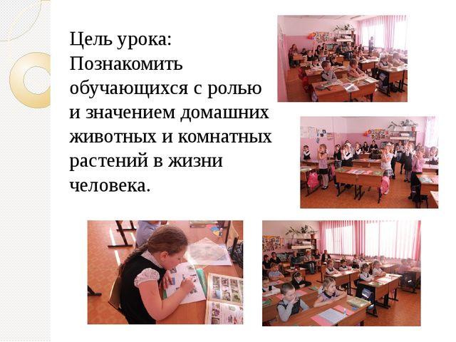 Цель урока: Познакомить обучающихся с ролью и значением домашних животных и...