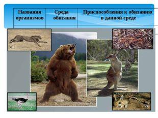 * Названия организмовСреда обитанияПриспособления к обитанию в данной среде