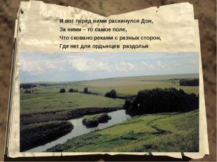И вот перед ними раскинулся Дон, За ними – то самое поле, Что сковано реками