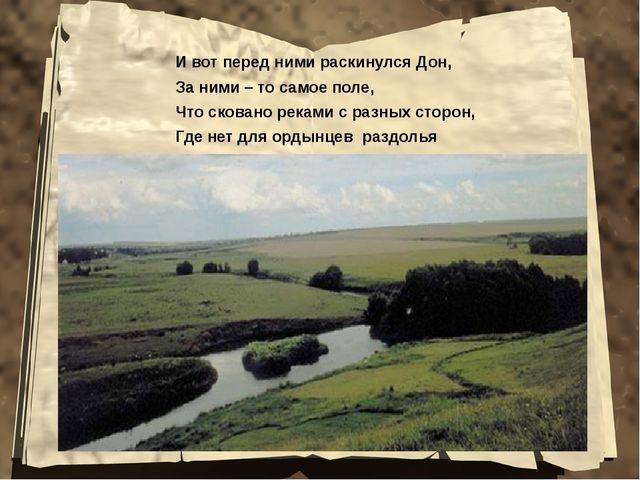 И вот перед ними раскинулся Дон, За ними – то самое поле, Что сковано реками...