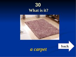 30 What is it? a carpet