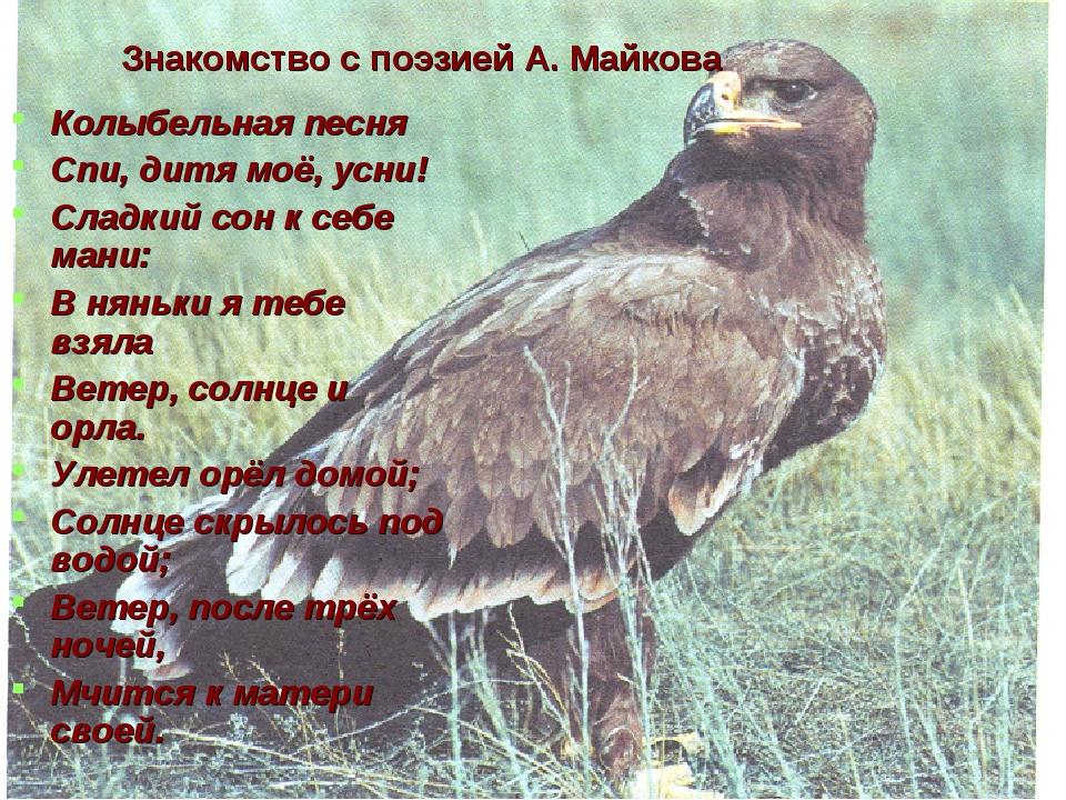 Знакомство с поэзией А. Майкова Колыбельная песня Спи, дитя моё, усни! Сладк...