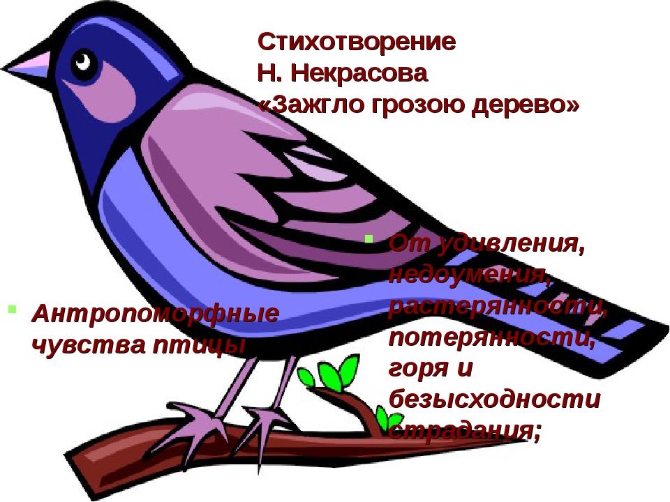 Стихотворение Н. Некрасова «Зажгло грозою дерево» Антропоморфные чувства птиц...