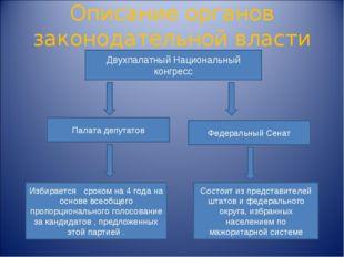 Описание органов законодательной власти Двухпалатный Национальный конгресс Па