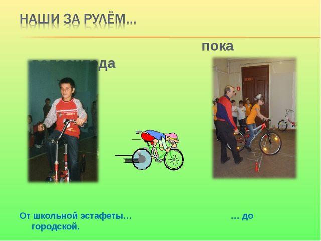 пока велосипеда От школьной эстафеты… … до городской.