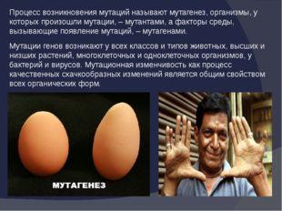 Процесс возникновения мутаций называют мутагенез, организмы, у которых произо
