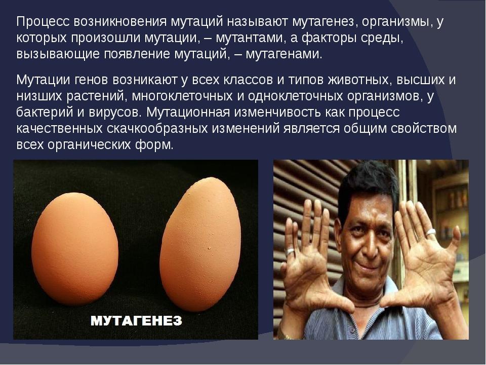 Процесс возникновения мутаций называют мутагенез, организмы, у которых произо...