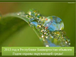 2013 год в Республике Башкортостан объявлен Годом охраны окружающей среды! wa