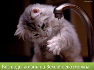 Без воды жизнь на Земле невозможна. wallpaper.goodfon.ru