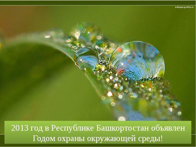 2013 год в Республике Башкортостан объявлен Годом охраны окружающей среды! wa...