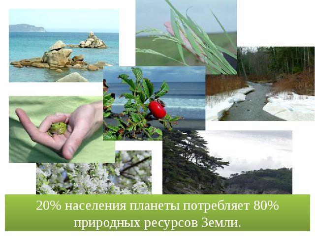 20% населения планеты потребляет 80% природных ресурсов Земли. wallpaper.good...