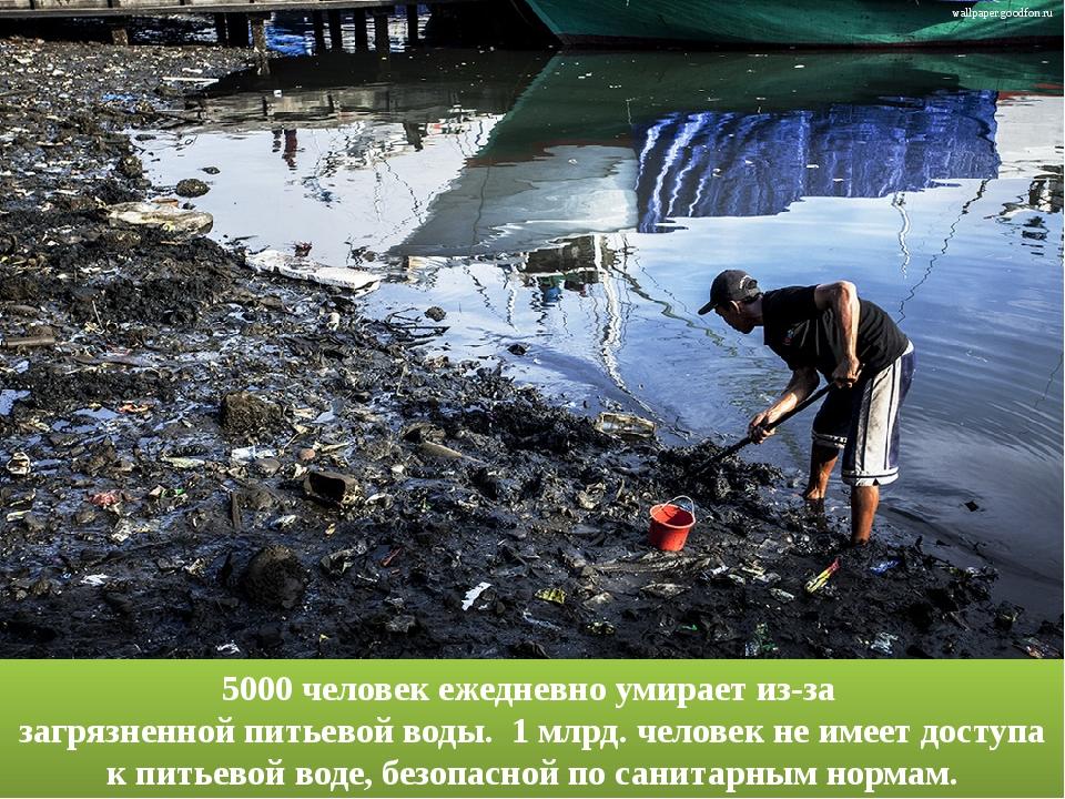 · 5000 человек ежедневно умирает из-за загрязненной питьевой воды. ...
