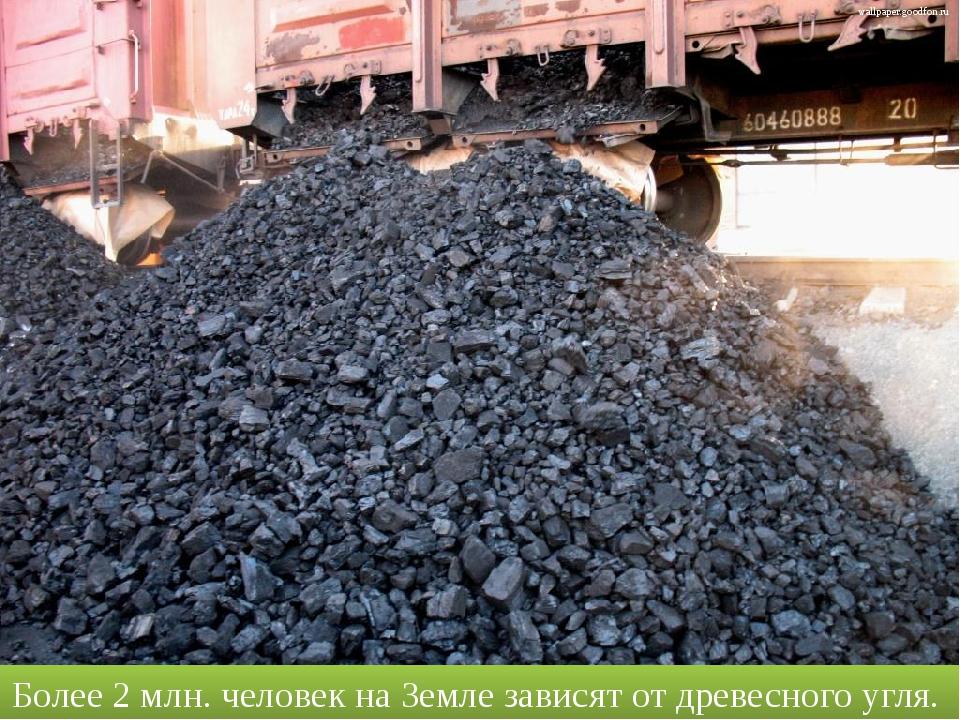 Более 2 млн. человек на Земле зависят от древесного угля. wallpaper.goodfon.ru