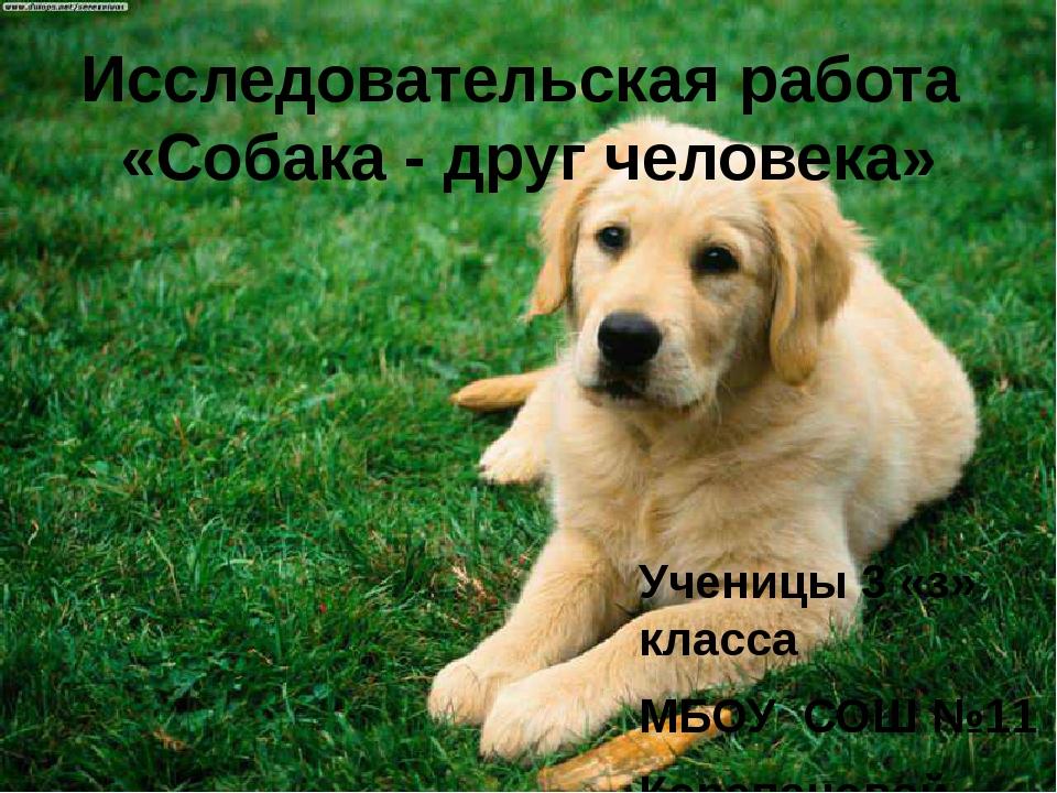 Исследовательская работа «Собака - друг человека» Ученицы 3 «з» класса МБОУ С...