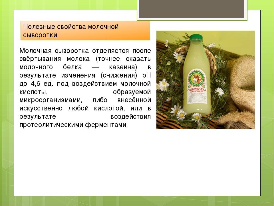Полезные свойства молочной сыворотки Молочная сыворотка отделяется после свёр...