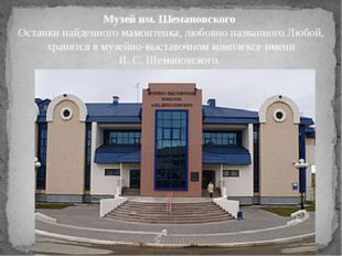 Музей им. Шемановского Останки найденного мамонтенка, любовно названного Любо