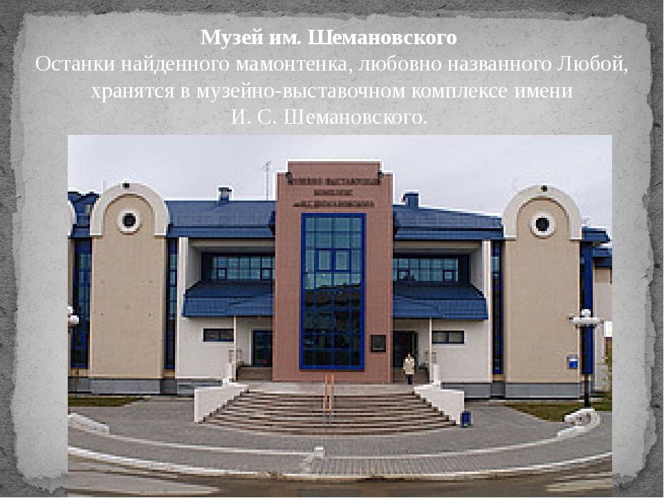 Музей им. Шемановского Останки найденного мамонтенка, любовно названного Любо...