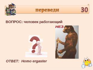 ВОПРОС: человек работающий ОТВЕТ: Homo ergaster