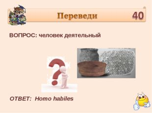ВОПРОС: человек деятельный ОТВЕТ: Homo habiles