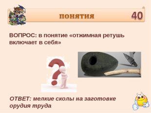 ВОПРОС: в понятие «отжимная ретушь включает в себя» ОТВЕТ: мелкие сколы на за