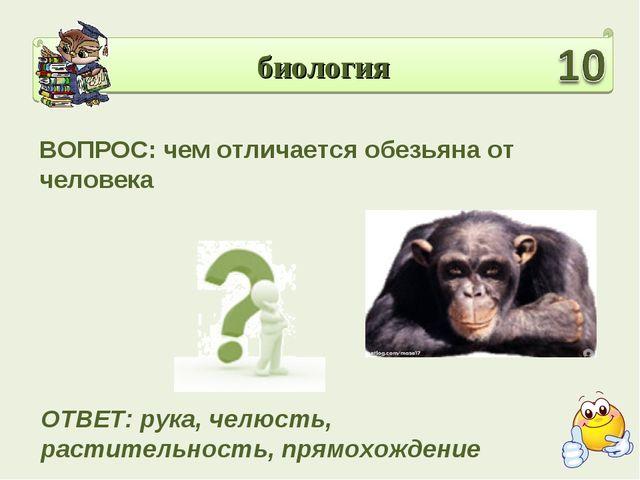 биология ВОПРОС: чем отличается обезьяна от человека ОТВЕТ: рука, челюсть, ра...