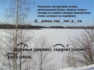 Д__ревья, скр__пит, р__ка. Пользуясь алгоритмом, вставь пропущенные буквы, з