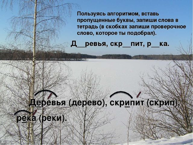 Д__ревья, скр__пит, р__ка. Пользуясь алгоритмом, вставь пропущенные буквы, з...