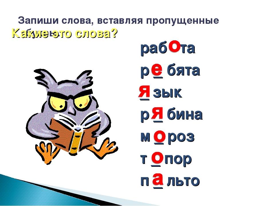 Запиши слова, вставляя пропущенные буквы. раб та р _ бята _ зык р _ бина м _...