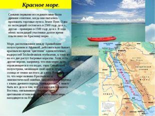 Красное море. Самыми первыми исследователями были древние египтяне, когда он