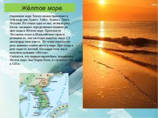 Окраинное море Тихого океана принимает в себя воды рек Хуанхэ, Хайхэ, Луаньх