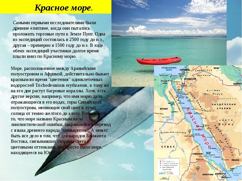 Красное море. Самыми первыми исследователями были древние египтяне, когда он...