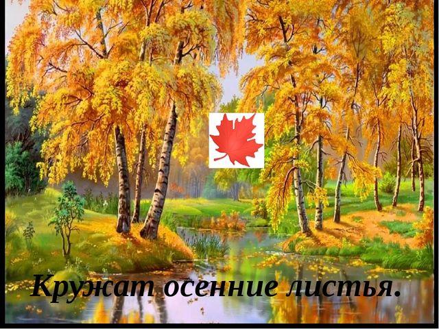 Кружат осенние листья.