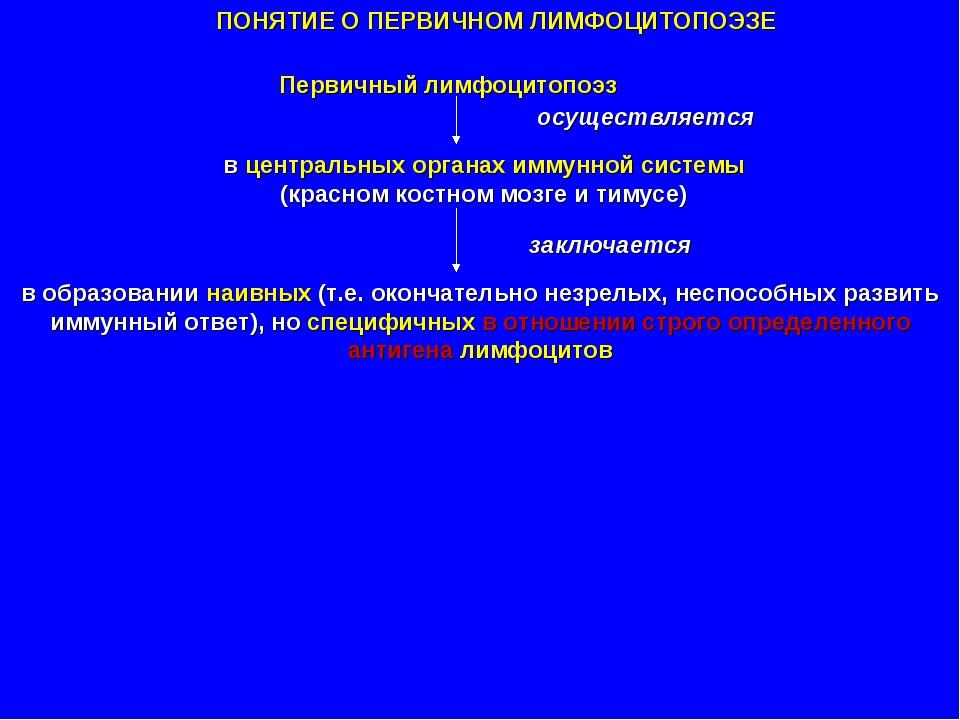 ПОНЯТИЕ О ПЕРВИЧНОМ ЛИМФОЦИТОПОЭЗЕ Первичный лимфоцитопоэз в центральных орга...