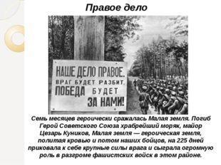 Правое дело Семь месяцев героически сражалась Малая земля. Погиб Герой Советс