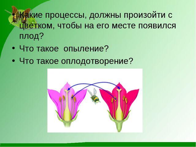Какие процессы, должны произойти с цветком, чтобы на его месте появился плод?...