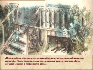«Ночью собака подкралась к заснувшей даче и улеглась на своё место под терра