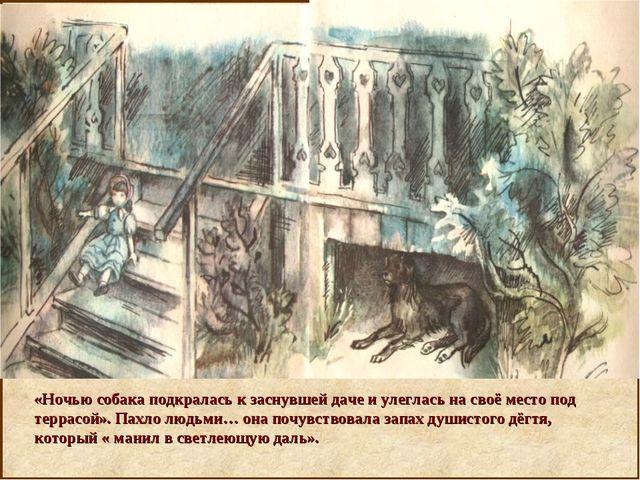 «Ночью собака подкралась к заснувшей даче и улеглась на своё место под терра...