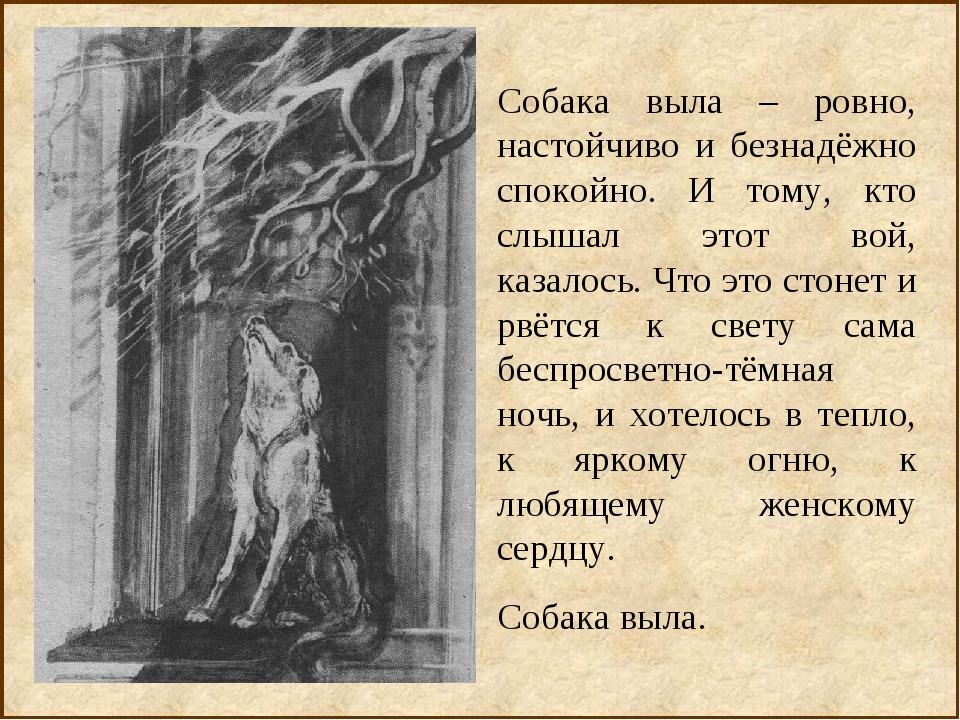 Собака выла – ровно, настойчиво и безнадёжно спокойно. И тому, кто слышал это...